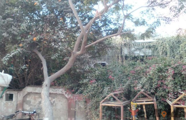 nithari haunted bungalow